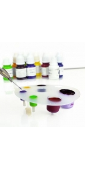 Disposable Tattoo ink cup set